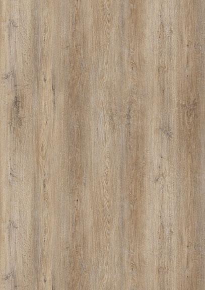 Cortado Oak
