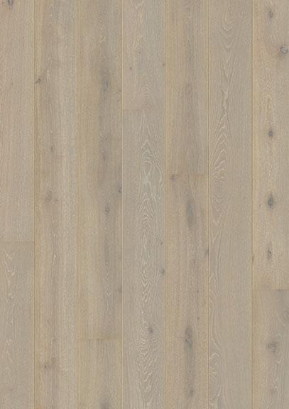 Chalked Oyster Oak