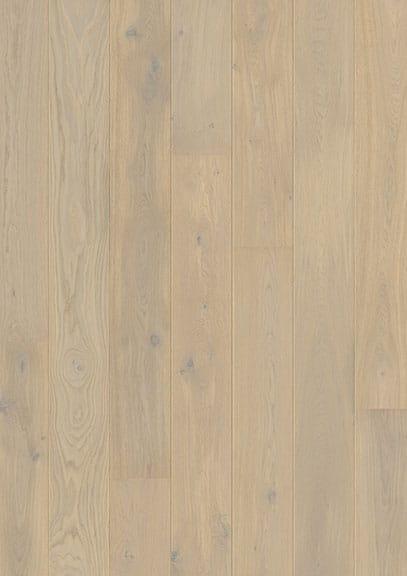 Lapland Oak